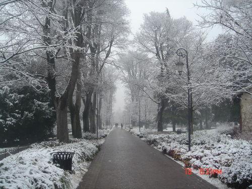 冬季风景背景ps素材